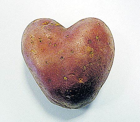 heart-shaped potato