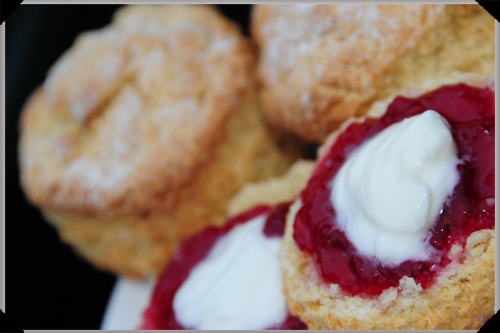 Scones And Redcurrant Jelly