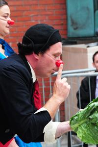 Cirque de legume cabbage
