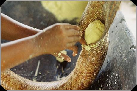 Cassava in a tipiti