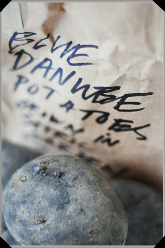 Blue Danube Potatoes