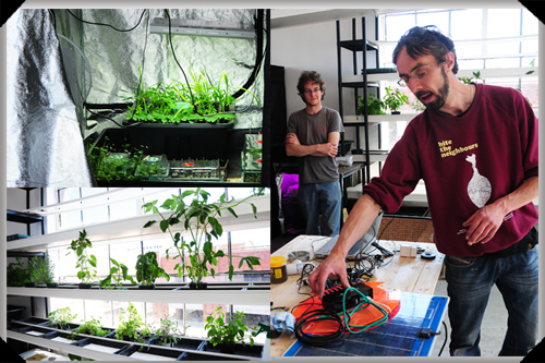 In the Dublin Urban Farm lab
