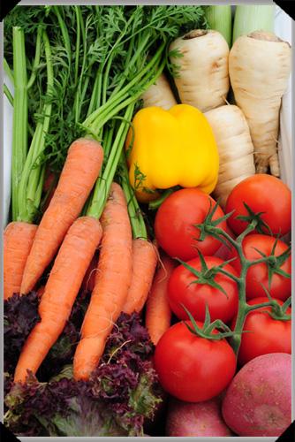 Seasonal Vegetable Basket from Bord Bia