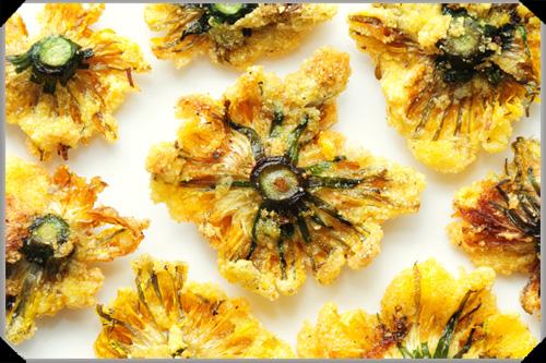 Fried Dandelion Flowers