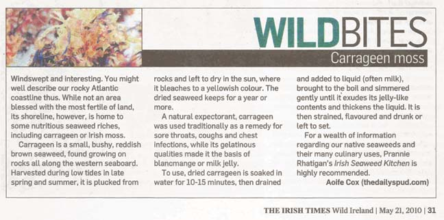 Carrageen Moss in The Irish Times