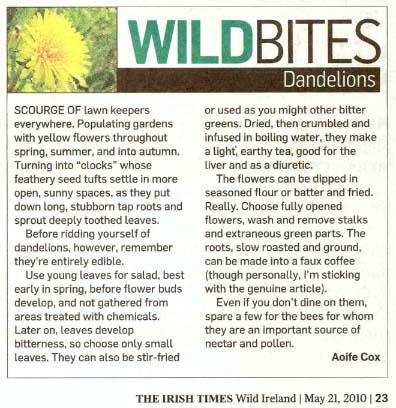 Dandelions in The Irish Times
