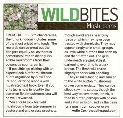 Mushrooms in The Irish Times