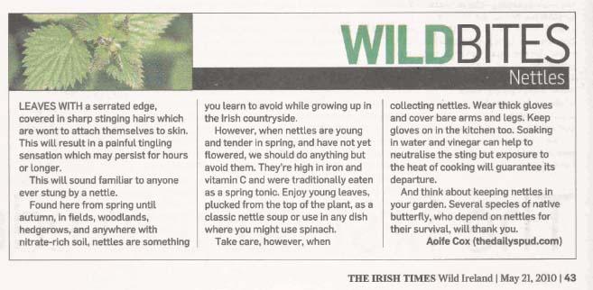 Nettles in The Irish Times