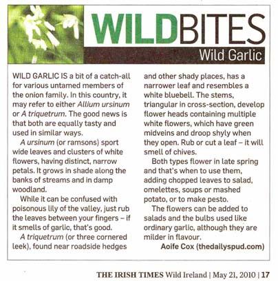 Wild Garlic in The Irish Times