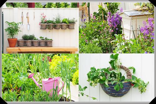 The GIY edible garden at Bloom
