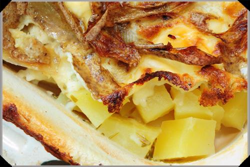 Potato gratin with goats cheese