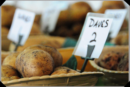 Dave Langford's potato no 2