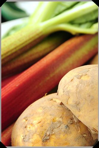 Rhubarb and potatoes
