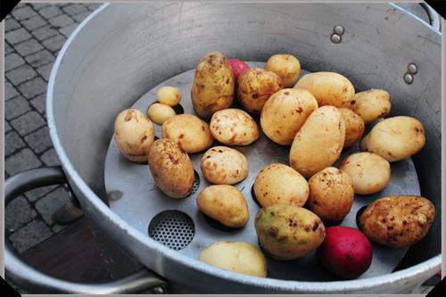 Potato steamer