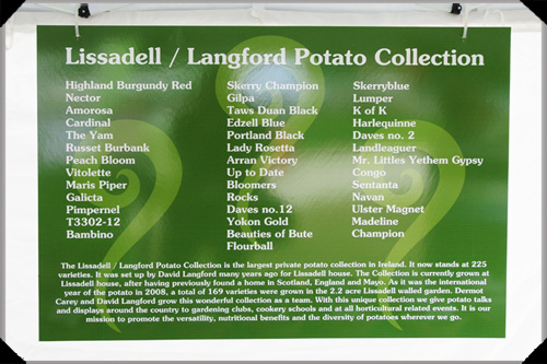 Lissadell Langford Potato Collection