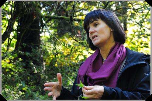 Mary Bulfin forager