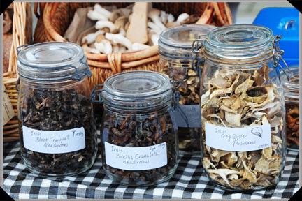Ballyhoura Mountain Mushrooms