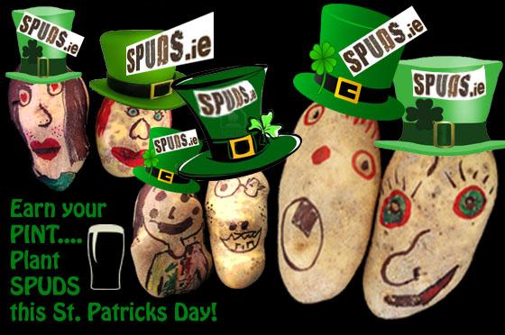 SPUDS St Patricks 2013