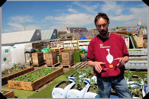 Andrew Douglas on the Dublin Urban Farm roof