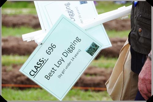 Best loy digging sign
