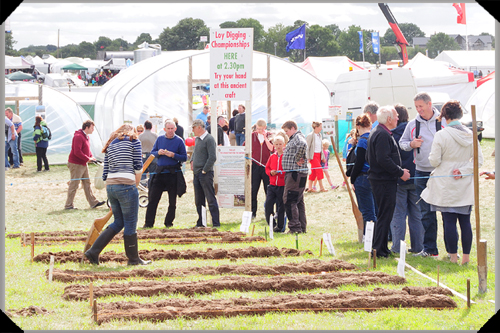 Loy digging at the Tullamore Show