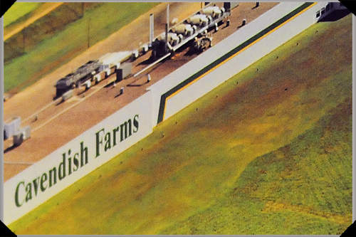 Cavendish Farms, PEI